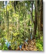 Cypress Pond Delight Metal Print