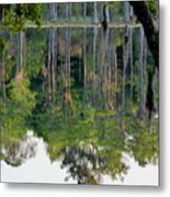 Cypress Pond Metal Print