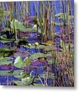 Cypress Pond Tranquility Metal Print