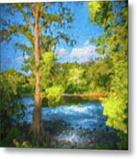 Cypress Tree By The River Metal Print