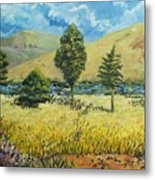 Cypresses At Lydenburg Metal Print