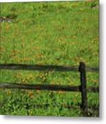 D7b6306 Fence And Poppies Metal Print