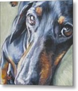 Dachshund Black And Tan Metal Print