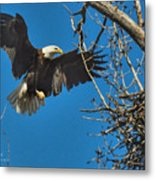 Daddy's Home Metal Print