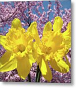 Daffodil Flowers Spring Pink Tree Blossoms Art Prints Baslee Troutman Metal Print