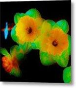 Daffodil Glow Metal Print