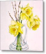 Daffodils And Pussy Willow Metal Print