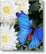 Dahlias And The Butterfly Metal Print