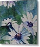 Daisies In The Blue Metal Print