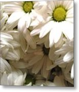Daisies Make Me Smile Metal Print