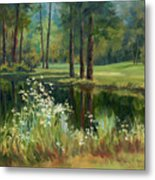 Daisies On The Golf Course Metal Print