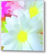 Daisy Poster Metal Print