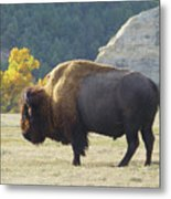 Dakota Badlands Majesty Metal Print