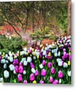 Dallas Arboretum Metal Print by Tamyra Ayles