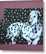 Dalmatian On A Spotted Couch Metal Print