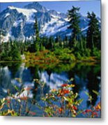 Damian Trevor - Awesome Mountain Tree Nature Landscape Metal Print