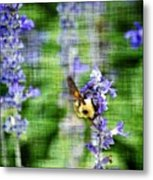 Dance Of The Bubblebee Metal Print