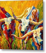 Dance Of The Longhorns Metal Print