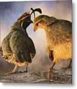Dance Of The Quail Metal Print