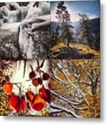 Dance Of The Trees Metal Print