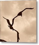 Dancing Birds Metal Print