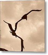 Dancing Birds Metal Print