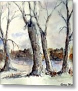 Dancing In Winter Metal Print