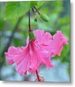 Dancing Lady Pink Hibiscus Metal Print