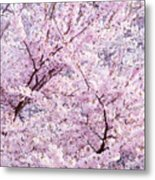 Dancing Sakura Haiku Metal Print