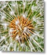Dandelion Explosion Metal Print