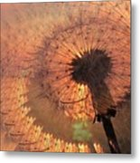 Dandelion Illusion Metal Print
