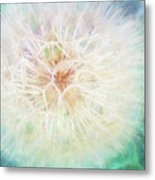 Dandelion In Winter Metal Print