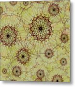 Dandelion Nosegay Metal Print