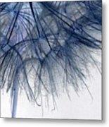 Dandelion Twenty Five Metal Print