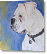 Danger The White Boxer Metal Print