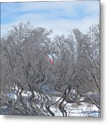 Dans Le Vent / In The Wind Metal Print