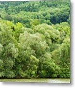 Danube Green Metal Print