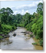 Danum Valley Metal Print