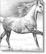 Dapple Grey Horse Metal Print