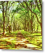 Dappled Metal Print
