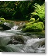 Dappled Green Metal Print