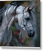 Dappled Grey Metal Print