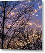 Dappled Sunset-1547 Metal Print