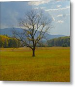 Dare To Stand Alone Metal Print by Michael Peychich