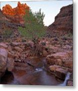 Dark Canyon Creek Metal Print