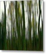 Dark Forest 3 Metal Print