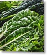 Dark Green Leafy Vegetables Metal Print