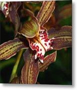 Dark Orchid Metal Print