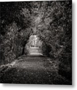 Dark Path In Black And White Metal Print