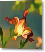 Dark Red Day Lily With Sun Shining Through I Abstract I Metal Print